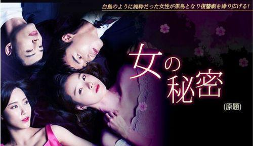 韓国ドラマ-女の秘密-あらすじ-全話