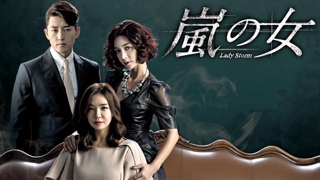 韓国ドラマ-嵐の女-あらすじ-相関図