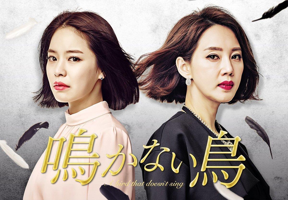 韓国ドラマ-鳴かない鳥-あらすじ-相関図