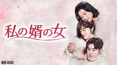 韓国ドラマ-私の婿の女-あらすじ-キャスト