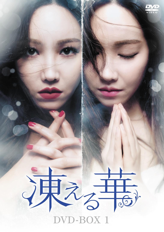 韓国ドラマ-凍える華-あらすじ-キャスト