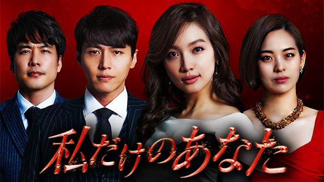 韓国ドラマ-私だけのあなた-あらすじ-キャスト
